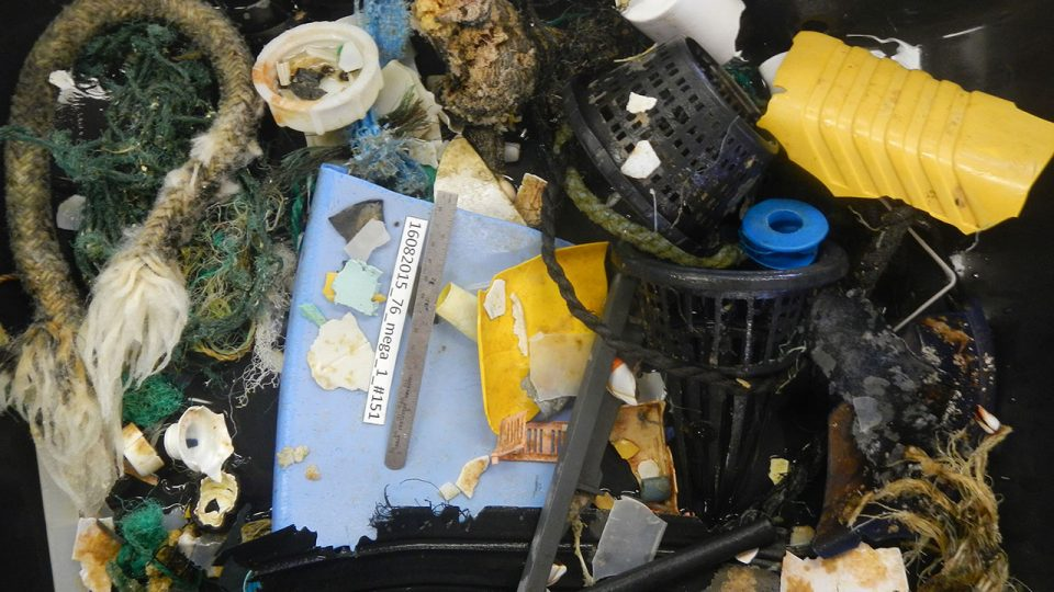 #02 - Results of an hour of sampling with the Mega Trawl **Photo credits: The Ocean Cleanup**